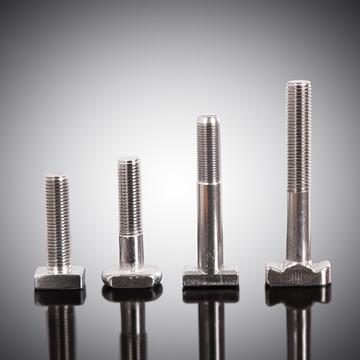 304、316不锈钢T型螺栓